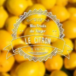 E-liquide VDLV Citron
